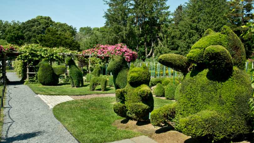 image from inside Green Animals Topiary Gardens